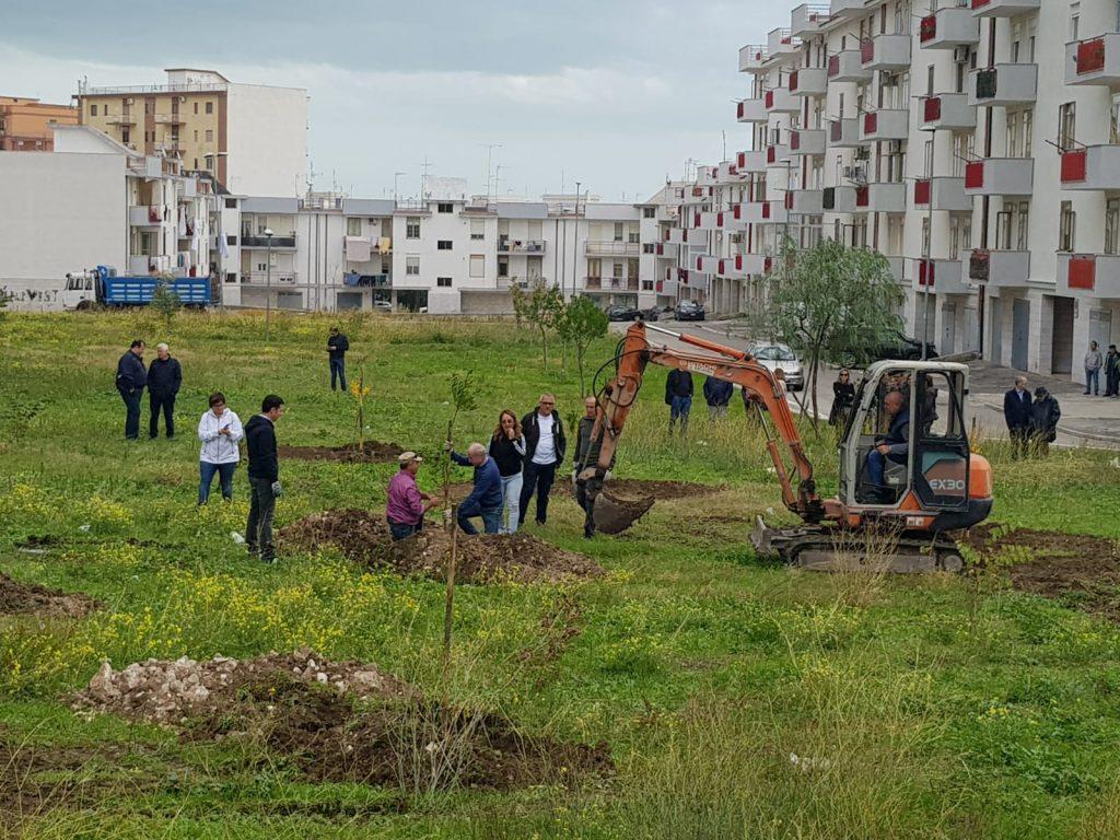 Alberi per il Futuro, più alberi a Manfredonia grazie al Meetup 5 Stelle - Manfredonia News